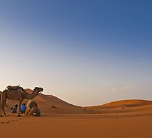 Sunrise in Erg Chebbi on edge of the Sahara (II) by Konstantinos Arvanitopoulos