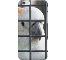 Yellow-Crested Cockatoo iPhone Case/Skin