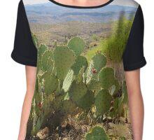 Tonto State Forest, Arizona Chiffon Top
