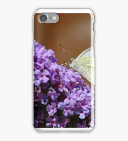 Cabbage White butterfly on Buddleia iPhone Case/Skin