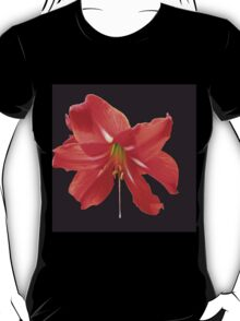 Scarlet Lily on Black Background T-Shirt