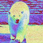 Colorful Bear by Kathleen Struckle