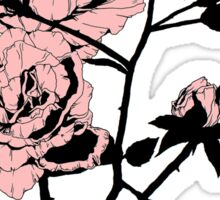 Pink Roses Sticker