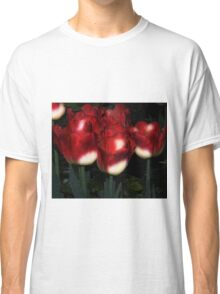 Red And White Tulips Classic T-Shirt