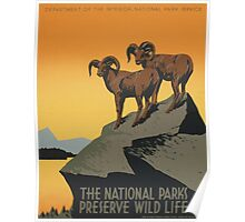 National Park Service WPA Travel Poster Poster