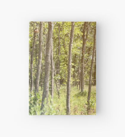 Tall Trees in the Summer Hardcover Journal