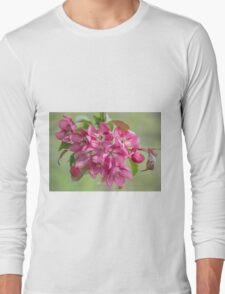 Crabapple Blossoms Long Sleeve T-Shirt