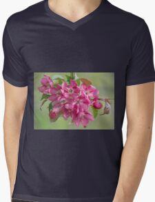 Crabapple Blossoms Mens V-Neck T-Shirt