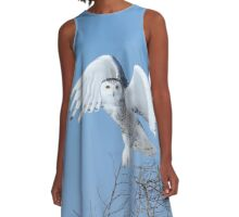 The eyes of a hunter A-Line Dress