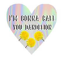 Dandelion by KellyCarolan