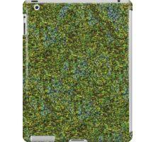IRELAND FIELDS FROM ABOVE iPad Case/Skin