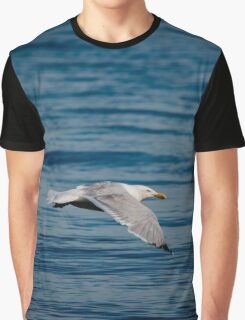 Larus Smithsonianus - American Herring Gull | East Marion, New York Graphic T-Shirt
