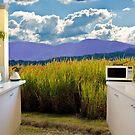 Open rural kitchen by flexigav