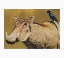 Hitching a Ride - Warthog and Starling - Wild Africa Kids Clothes