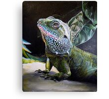 The Cameleon Watches  Canvas Print
