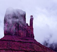 Mitten in the morning, Arizona by Ian Fegent