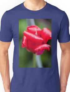Red and Curly Unisex T-Shirt