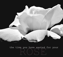 the time you wasted for your rose by IOANNA PAPANIKOLAOU