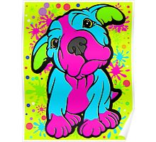 Colourful Pit Bull Puppy  Poster