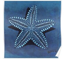Starfish in blue - acrylic painting Poster