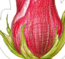 pink rosebud Sticker