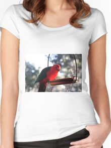 Pretty Polly Parrot Women's Fitted Scoop T-Shirt