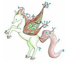 Nature Pegasus Photographic Print