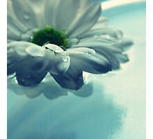 FLOWER IN WATER Photographic Print
