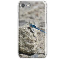 Damselfly iPhone Case/Skin