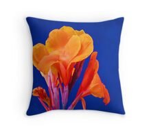flower against blue wall - flor contra muro azul Throw Pillow