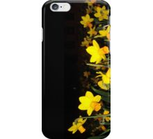 daffs.on.blk iPhone Case/Skin