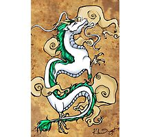 Haku Photographic Print