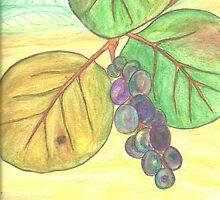 Sea Grape by konamirror