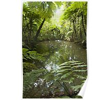 Flooded Bomb Crater - Pohnpei, Island Poster