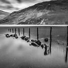 Lake District Tranquility by Patricia Jacobs DPAGB LRPS BPE4