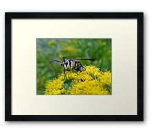Does it look like I'm smiling Framed Print