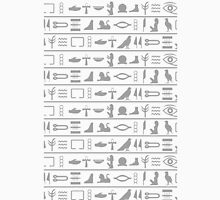 Egyptian hieroglyphics Unisex T-Shirt