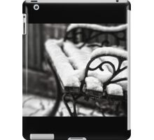 Bench in Snow iPad Case/Skin