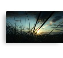 Sunset sand dune Canvas Print