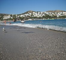 Seagull Beach Greece by Vitta