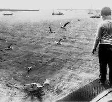 Fish Skins for the Gulls by Nigel Bangert