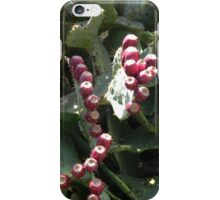 """Prickly Pear """"Tunas"""" or Fruit iPhone Case/Skin"""