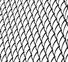 Chain Link on White  by Ethna Gillespie