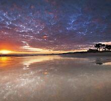 Papamoa Domain Heaven by Ken Wright