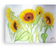 Yellow Sunflowers from Sloan'sMarket Canvas Print
