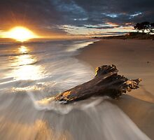 Papamoa Domain Surf Stump by Ken Wright