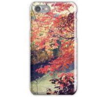 Rocky River iPhone Case/Skin