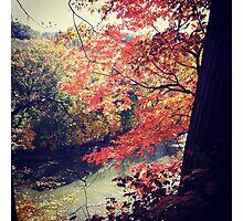 Rocky River Photographic Print