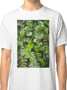 Where Ferns Grow Classic T-Shirt