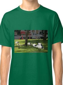Birds, parks and roadworks Classic T-Shirt